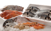 SEAFOOD – export, import and trading