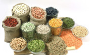 Food grains – export, import and trading