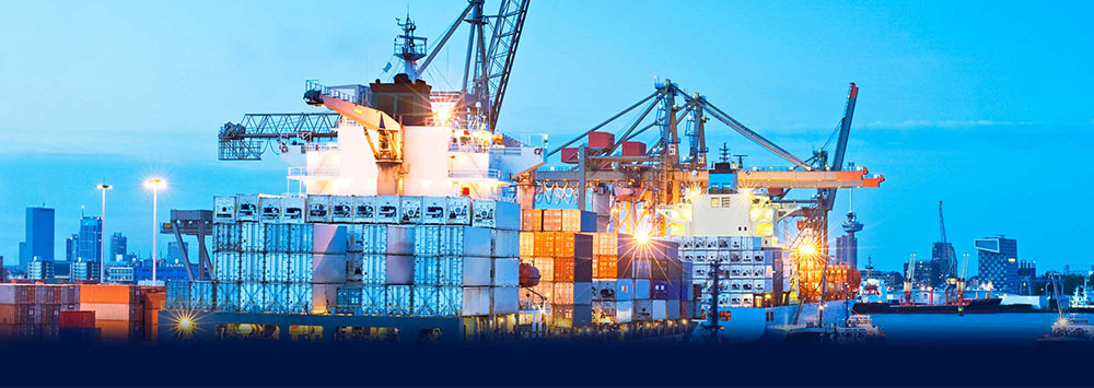 import-export-Wise-Business-Group